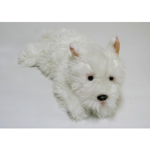 Pies West Terrier Roxi - 40cm
